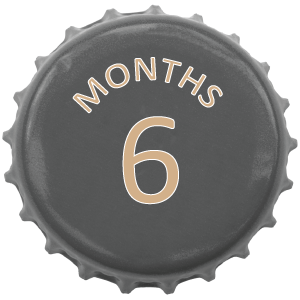 6 months swiss beer